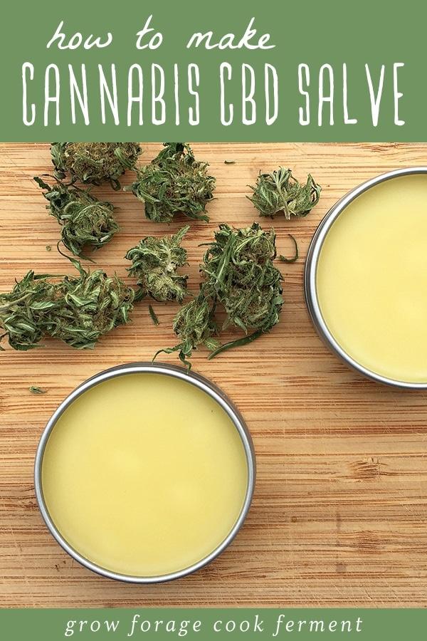 cannabis cbd salve